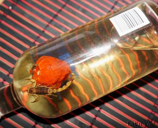 Le scorpion ne pouvait plus se retenir