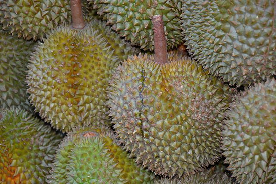 Durians (1)